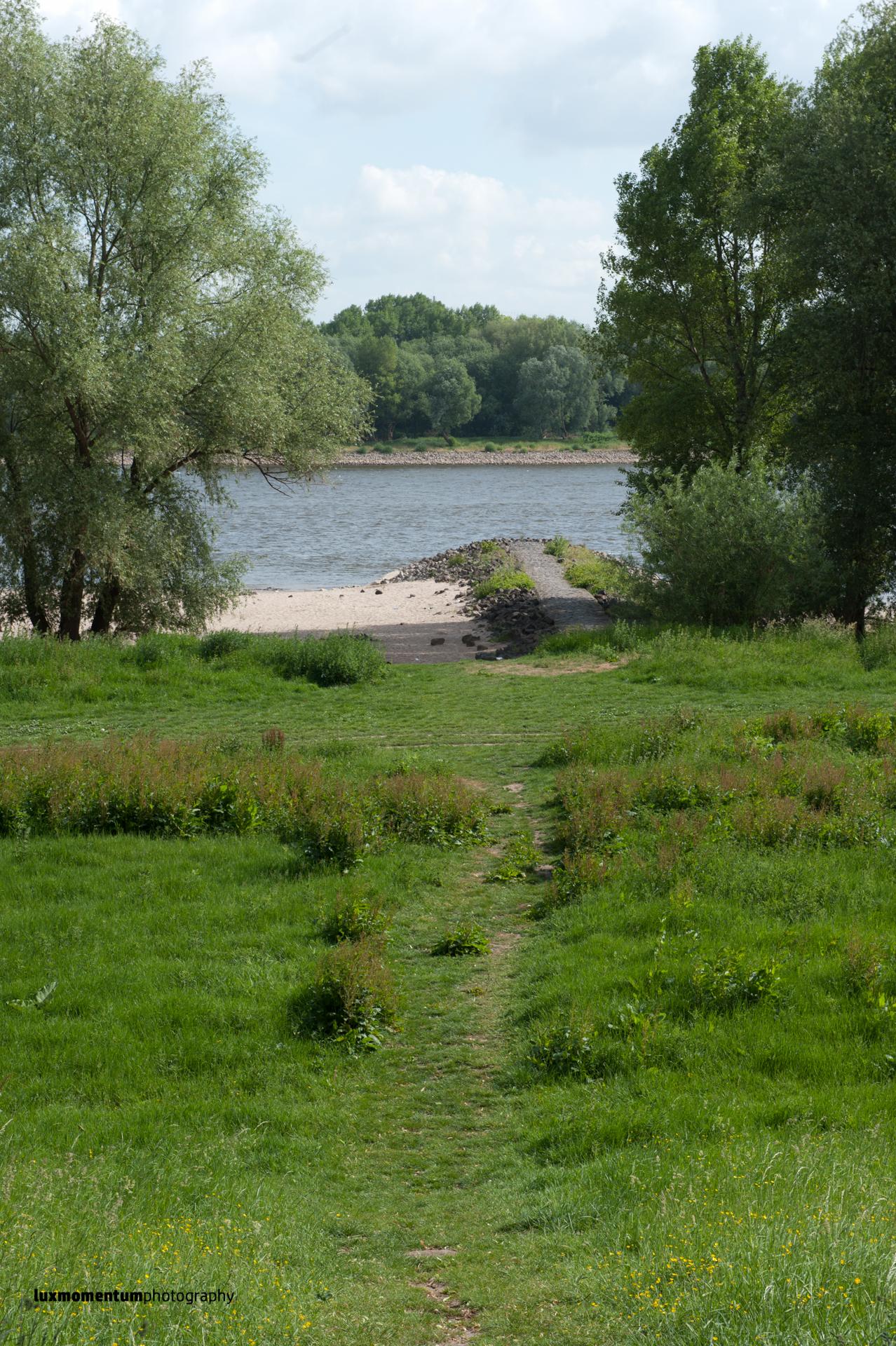 Rheinufer und Hafen Niehl